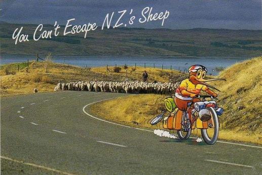 Radio-New-Zealand